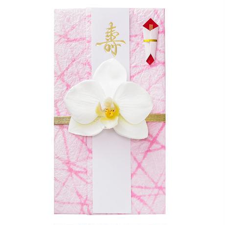 胡蝶蘭のし袋(E)