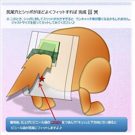 アレンジ 尻尾太いタイプ