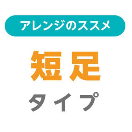 アレンジ・短足タイプ