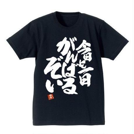 青葉の今日も一日がんばるぞい ヘビーウェイトTシャツ【NEW GAME!!】
