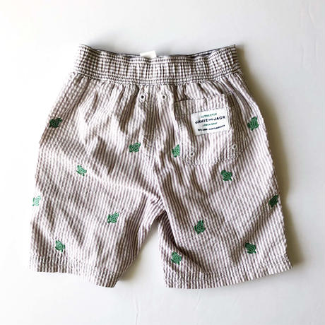 turtle swim pants