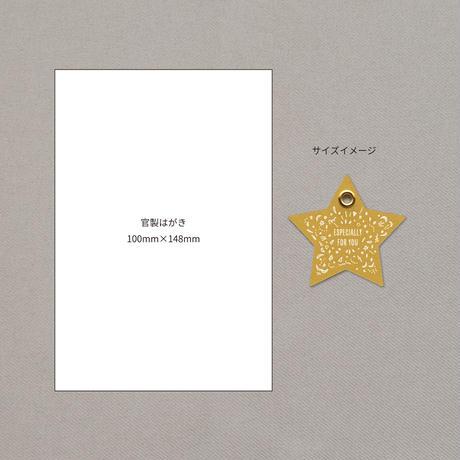 【チマチマ】ギフトタグ スター