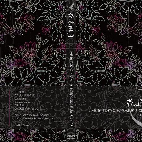 『花鳥風月/花鳥風月な夜』Live at CROCODILE 2018.04.08