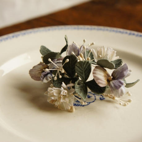 ビオラと白詰草とクローバー