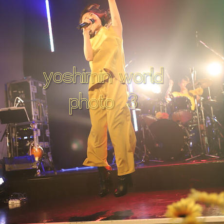 ライブ写真 NO.1  (yoshimi LIVE Stream光)