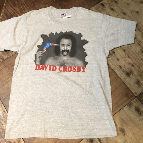 80s アメリカ製 DAVID CROSBY デビッド クロスビー  Tシャツ!