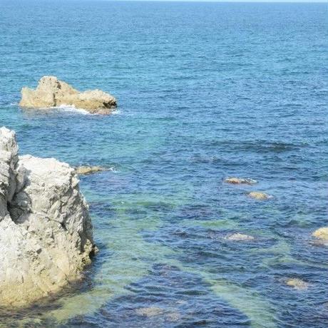 笹川流れ 玉藻塩 150g