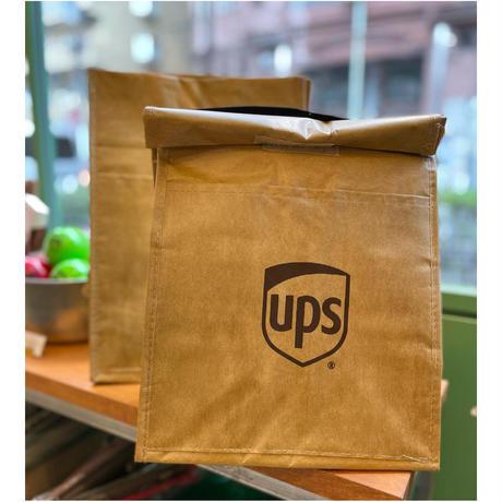 UPS Paper Bag  Can Cooler