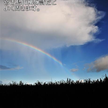 宮古島を感じよう!フレッシュハーブティー入門セット【7/23発送】畑での収穫ライブ配信あり!