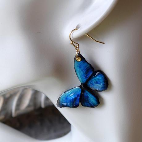 メネラウスモルフォのピアス blue plus.col 3Ssize(片耳用)