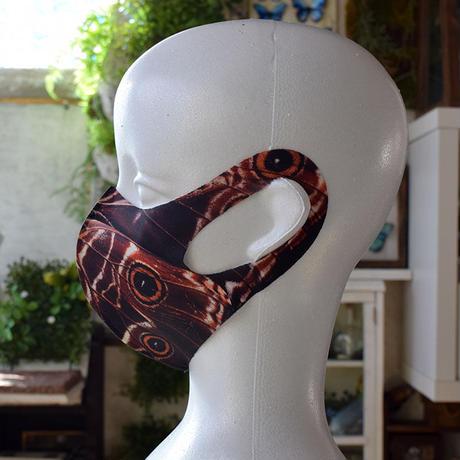 ディダミアモルフォ(back side)のマスク