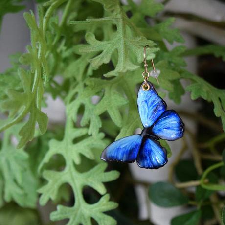 蝶のピアス メネラウスモルフォ blue.col 3Ssize (片耳用)