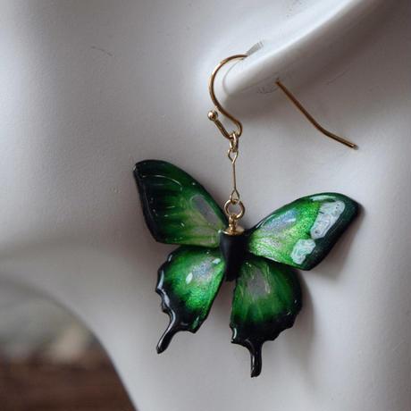 オオルリアゲハのピアス green.col 3Ssize(片耳用)