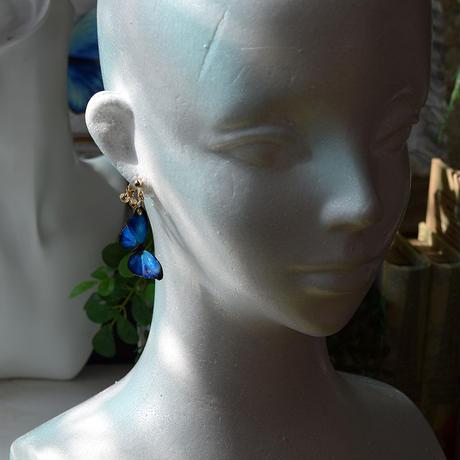メネラウスモルフォのイヤリング BLUE PLUS.col 3Ssize(片耳用)