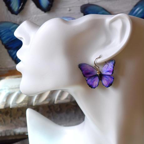 メネラウスモルフォのピアス lavender.col 3Ssize(片耳用)