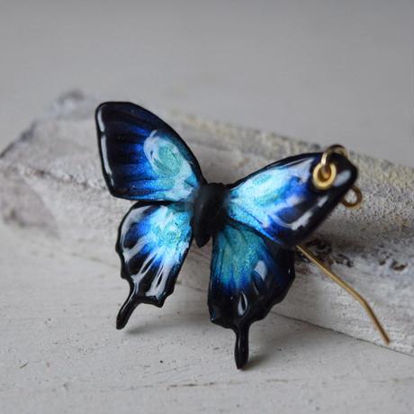 オオルリアゲハのピアス blue plus.col 3Ssize(片耳用)
