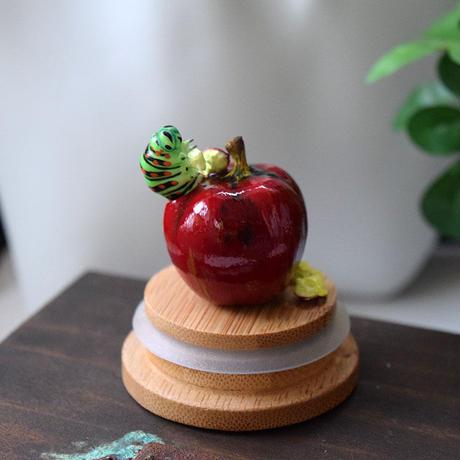 リンゴにまみれる夢をみるキアゲハ②