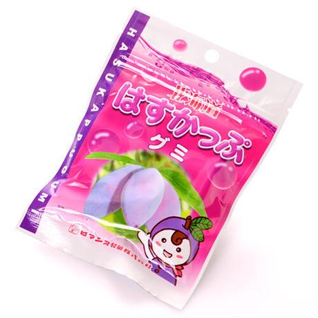 【ロマンス製菓】北海道 はすかっぷグミ