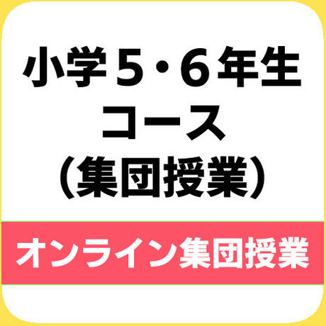 【集団授業】小学生コース【5・6年生】(週1回)※税込