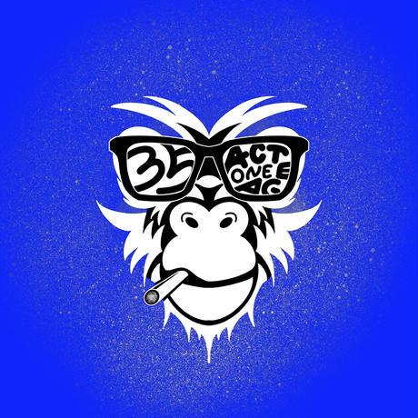 35th monkey Parker