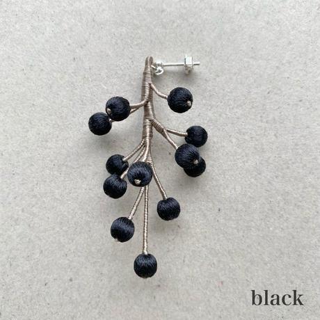 berry / 果実