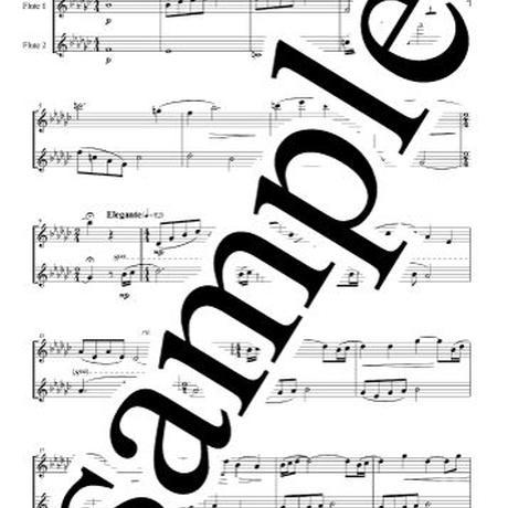 【Flute Duet】Reflection(ムーラン)