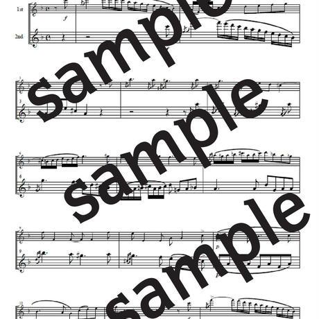 ヴェニスの謝肉祭(ジュナン) フルート2重奏完全版
