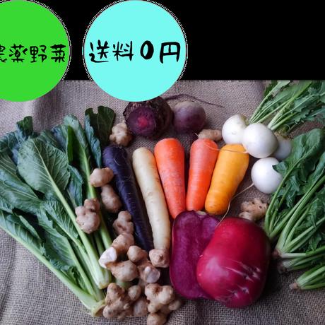 季節のお野菜 わらいセット