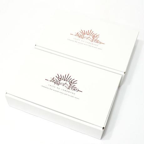 濃甘フルーツトマト「太陽のたまもの MINI」コンパクトBOX SMALL 2箱