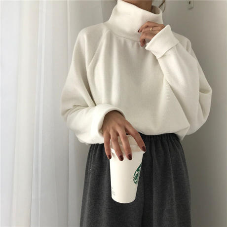 high neck rib knit