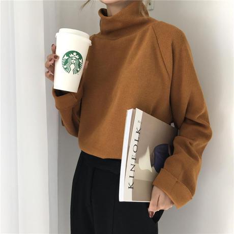 【 2/3 - 再入荷 】high neck rib knit