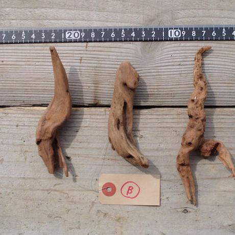 インドネシア産マングローブ流木3本セット−B Drift woods