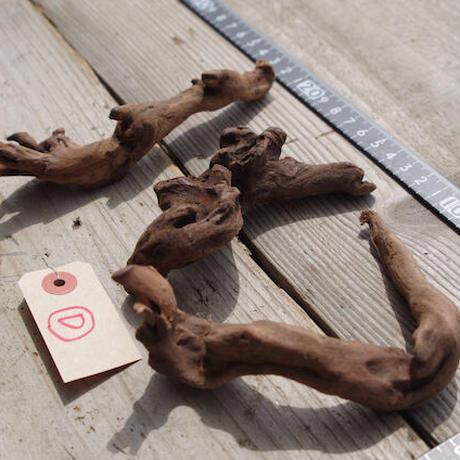 インドネシア産マングローブ流木3本セット−D Drift woods