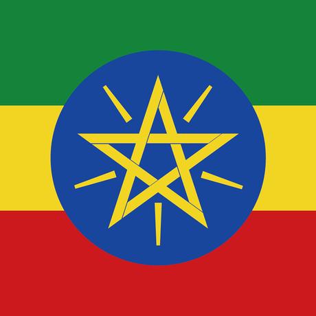エチオピア ゲイシャG-3 ナチュラル ゲレナ農園|深煎り|コーヒー豆150g or ドリップバッグ6袋