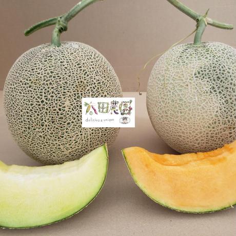 新潟県特別栽培認証 情熱メロン4個入り【赤肉2個・青肉2個入り】