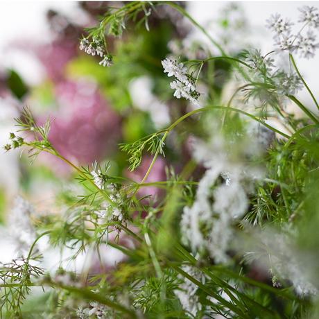 季節のお花のブーケLuxe