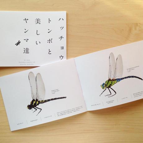 イラストブック「ハッチョウトンボと美しいヤンマ達」