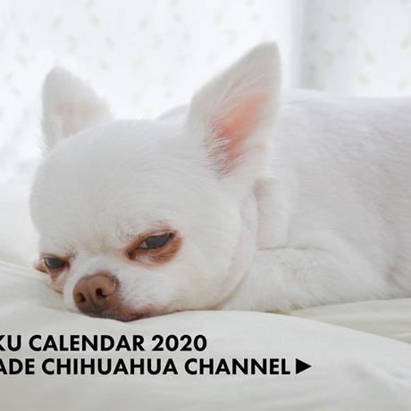 【送料無料】2020年『あくまでチワワチャンネル』壁掛けカレンダー