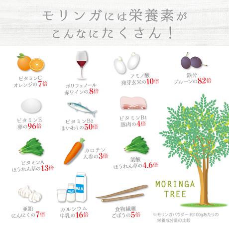 モリンガパウダー(100g)