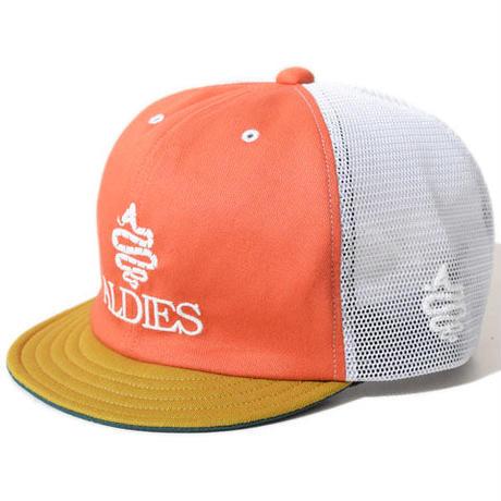 Testimony Cap(Orange)※直営店限定色