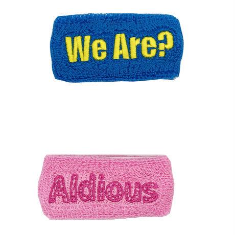 "Aldious Tour 2018 ""We Are"" スリムリストバンド2個セットターコイズ&ピンク(特典ステッカー付き)"