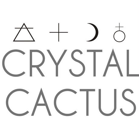 《Crystal Cactus》LUNA Diamond Quartzネックレス