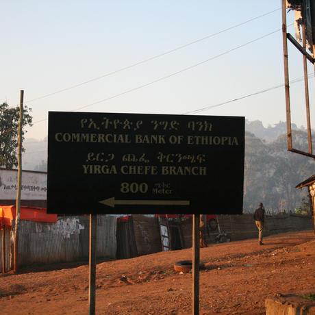 エチオピア イディドマウンテン 100g