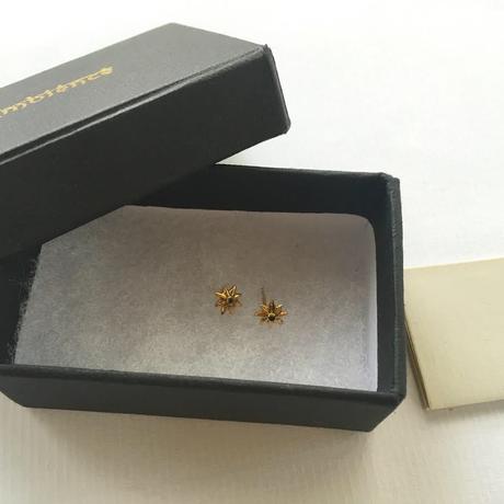 1star diamond / pierce
