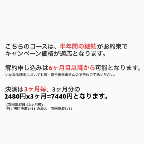 【3ヶ月毎決済】6ヶ月継続CP★msc通常すべて見放題コース月々3480円→2480円! (2021.6)