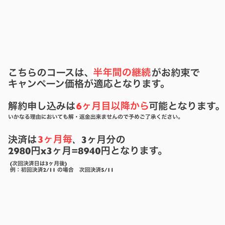 【3ヶ月毎決済】6ヶ月継続CP★msc発音解説付すべて見放題コース月々4980円→2980円! (2021.8)