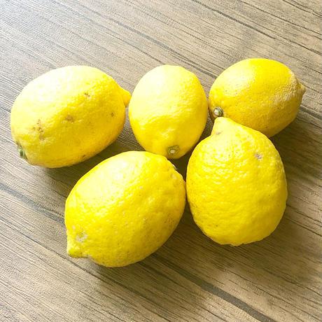 【無農薬】ドライフルーツ レモン