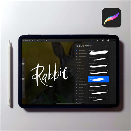 Procreate 文字スクリプトブラシ16本セット