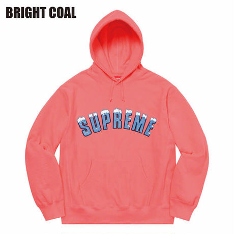 Supreme / ICY ARC HOODED