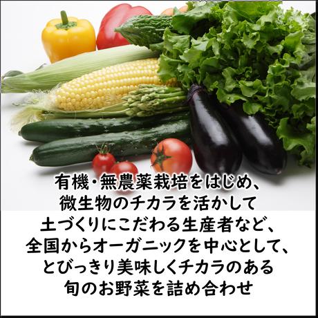 【定期便】ベジフルBOX・L(お野菜てんこ盛り)